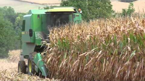 Seeds of Death: Unveiling the Lies of GMOs (Full Documentary)